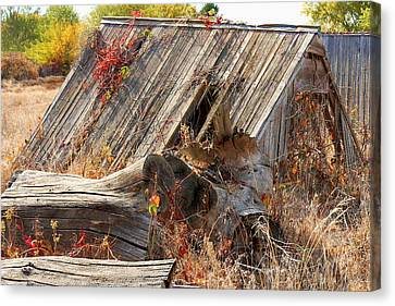 Canvas Print featuring the photograph The Autumn Of Nebraska by Bill Kesler