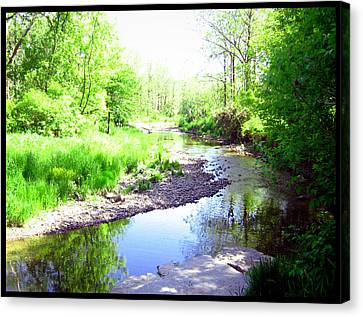 The Babbling Stream Canvas Print