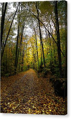 Old Country Roads Canvas Print - The Back Roads Of Autumn by David Patterson