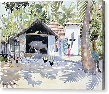 The Backwaters, Kerala, India Canvas Print by Lucy Willis