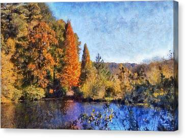The Bald Cypress Canvas Print by Daniel Eskridge