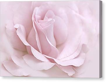 The Ballerina Pink Rose Flower Canvas Print by Jennie Marie Schell