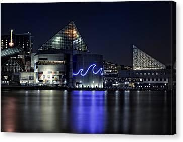 The Baltimore Aquarium Canvas Print by Rick Berk