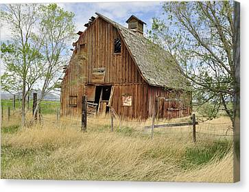 Canvas Print featuring the photograph the Barn  by Fran Riley
