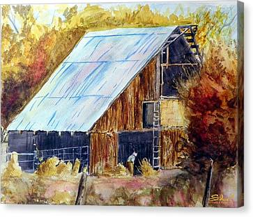 The Barn Mouser Canvas Print by Sherril Porter