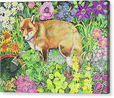 The Barnet Fox Canvas Print by Hilary Jones