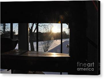 Canvas Print featuring the photograph The Basement Window by John Black