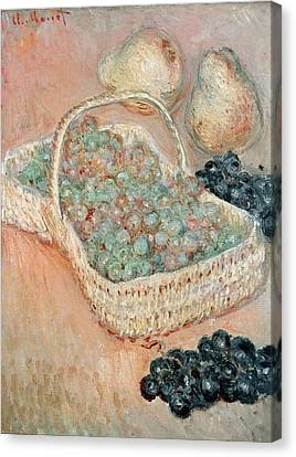 The Basket Of Grapes, 1884 Canvas Print by Claude Monet