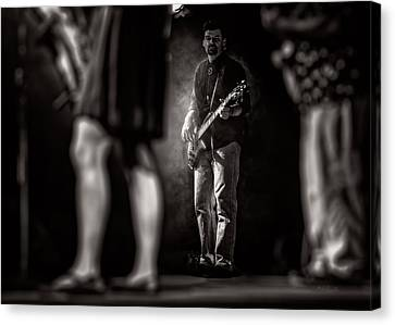 The Bassist Canvas Print