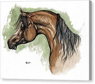 Bay Horse Canvas Print - The Bay Arabian Horse 12 by Angel  Tarantella