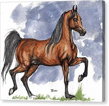 The Bay Arabian Horse 17 Canvas Print by Angel  Tarantella
