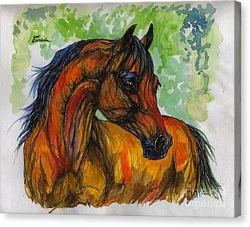 Bay Horse Canvas Print - The Bay Arabian Horse 3 by Angel  Tarantella