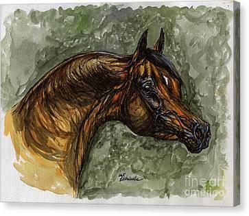 The Bay Arabian Horse Canvas Print by Angel  Tarantella