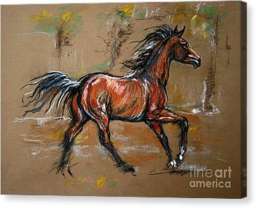 Bay Horse Canvas Print - The Bay Horse by Angel  Tarantella