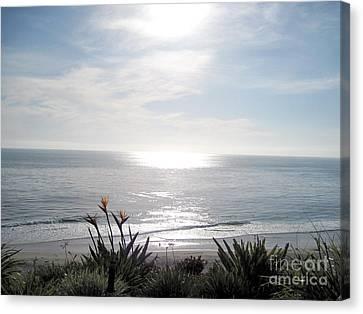 At The Beach At Dana Point California Canvas Print