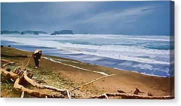The Beach Comber Canvas Print by Dale Stillman