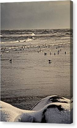 The Beach Is Ours Canvas Print by Odd Jeppesen