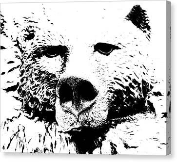 The Bear Canvas Print by Charlie and Norma Brock