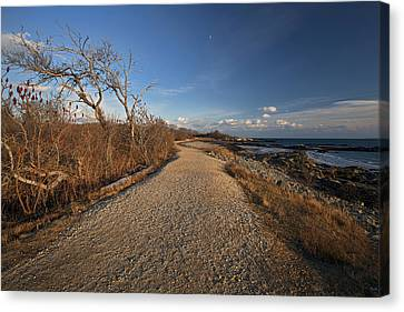 The Beaten Path Canvas Print by Eric Gendron