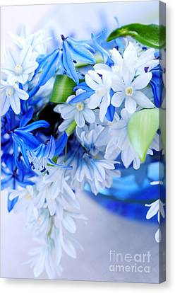 The Beautiful  Blue Flower Canvas Print by Boon Mee