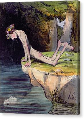 The Beautiful Narcissus Canvas Print