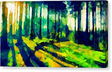 The Beautiful Trees Tnm Canvas Print by Vincent DiNovici