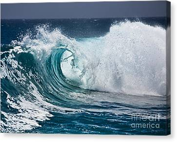 The Beautiful Wave Canvas Print by Boon Mee