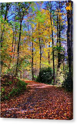 The Beauty Of Fall Canvas Print