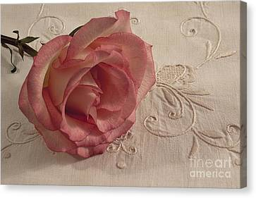 Canvas Print featuring the photograph The Beauty Of Just One Rose by Sandra Foster