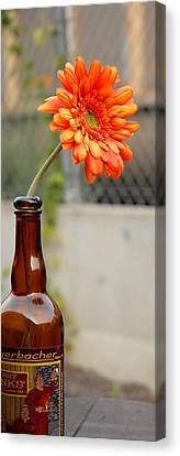 Canvas Print featuring the photograph The Beer Garden by Lena Wilhite