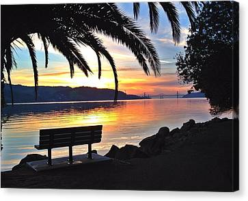 The Bench Canvas Print by Brian Maloney