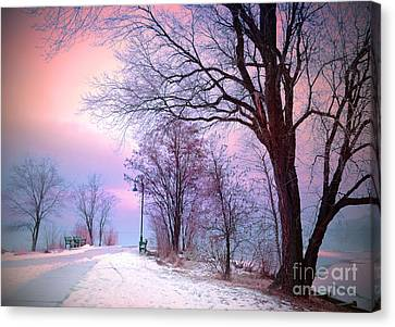 The Benches In Winter Canvas Print by Tara Turner