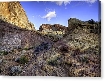 The Bend Canvas Print by Stephen Campbell