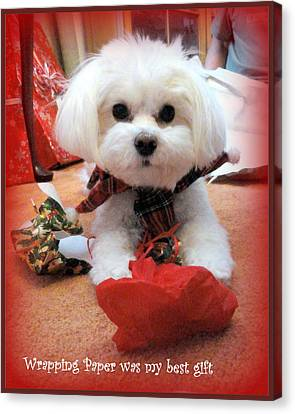 Canvas Print featuring the photograph The Best Gift by Mary Beth Landis