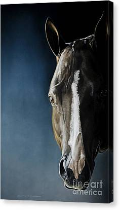 Forelock Canvas Print - The Best Martini by Joni Beinborn
