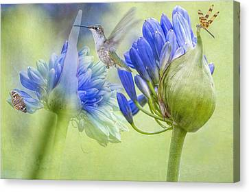 The Best Way To Keep Love Is To Give It Wings Canvas Print by Bonnie Barry