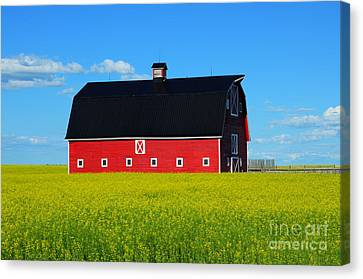The Big Red Barn Canvas Print by Bob Christopher