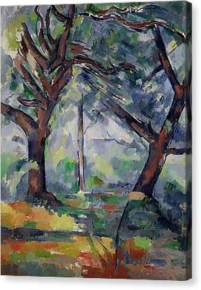 The Big Trees Canvas Print
