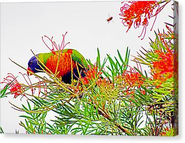 The Bird And The Bee Canvas Print