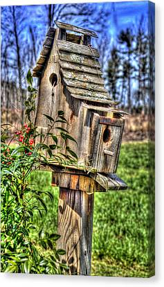 The Bird House Canvas Print by Craig T Burgwardt