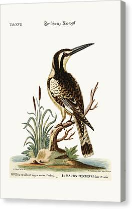 The Black And White Kingfisher Canvas Print by Splendid Art Prints