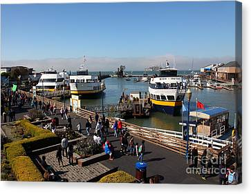 Alcatraz Canvas Print - The Blue And Gold Fleet Ferry Boat At Pier 39 San Francisco California 5d26040 by Wingsdomain Art and Photography