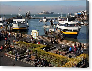 Alcatraz Canvas Print - The Blue And Gold Fleet Ferry Boat At Pier 39 San Francisco California 5d26044 by Wingsdomain Art and Photography