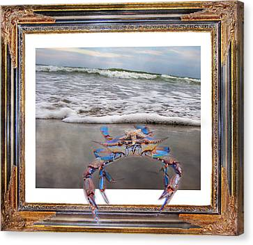 Out Of Frame Canvas Print - The Blue Crab by Betsy Knapp