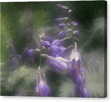 The Blue Lilies Canvas Print