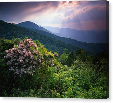 The Blue Ridge Parkway Canvas Print by Ray Mathis
