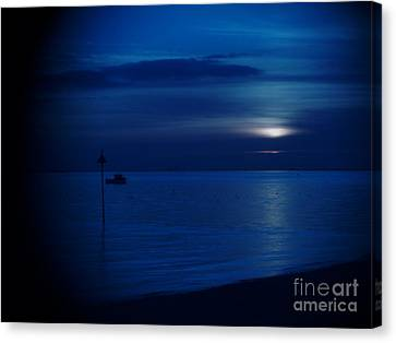 The Blues Canvas Print by Vicki Spindler