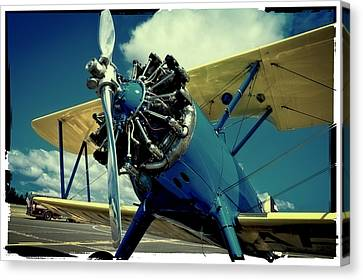 The Boeing Stearman Biplane Canvas Print by David Patterson