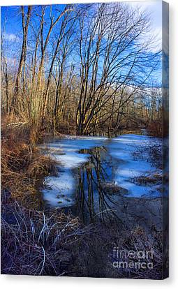 Canvas Print featuring the photograph The Bog by Rafael Quirindongo