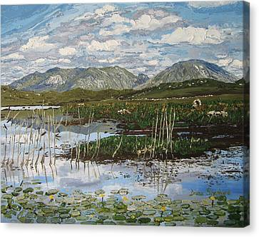 The Bog Road Roundstone Connemara Canvas Print by Diana Shephard
